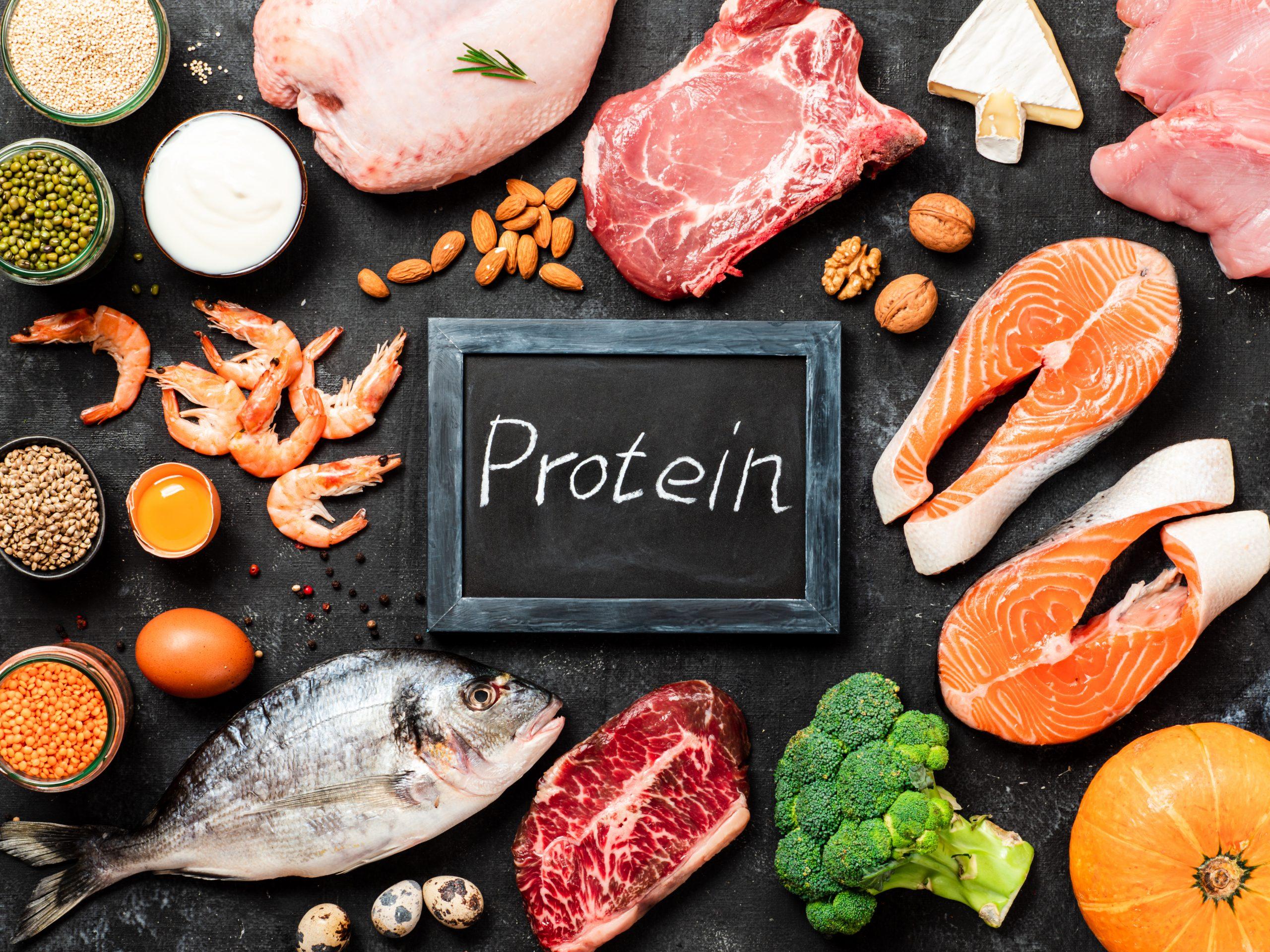 protein tüketimi iştahınızın kapanmasına yardımcı olur