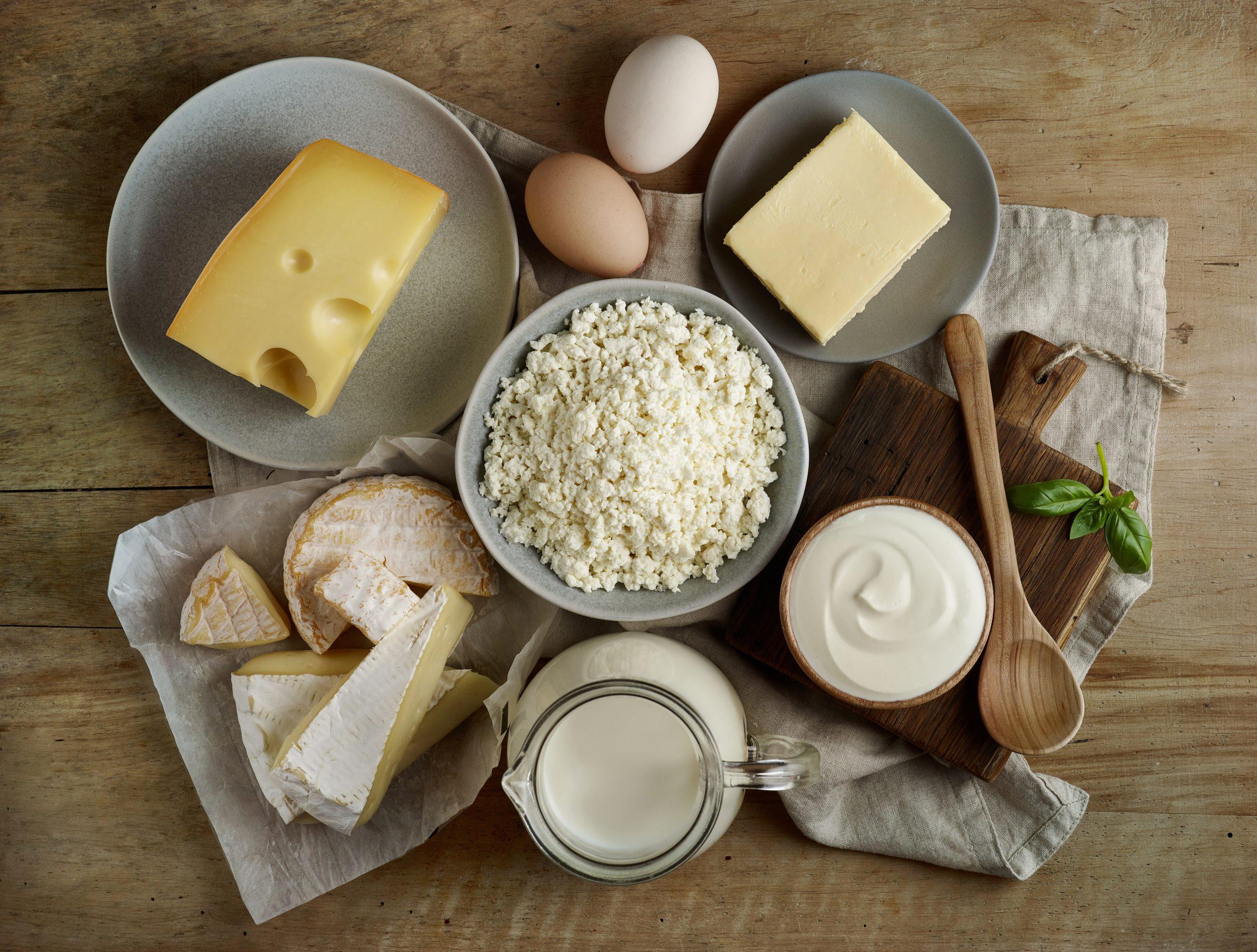 Yağlı Süt Ürünleri Kilo Almamıza sebep olur
